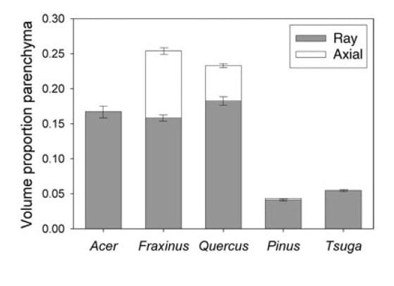 نسبت حجم پارانشیم شعاعی و محوری